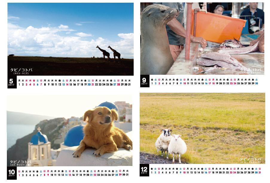 【本日最終日】クラウドファンディングで特製カレンダーをリターン